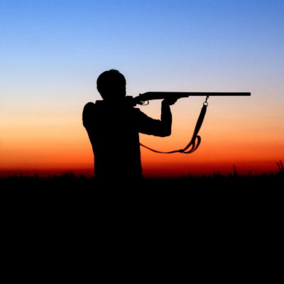 Pigeon Shooting Equipment