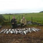 goose shooting scotland