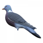 Pigeon Decoying