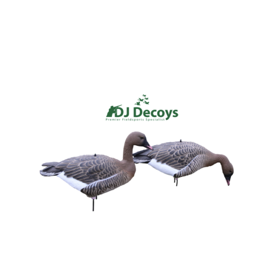 Enforcer Full bodied Pink Foot Goose Decoys